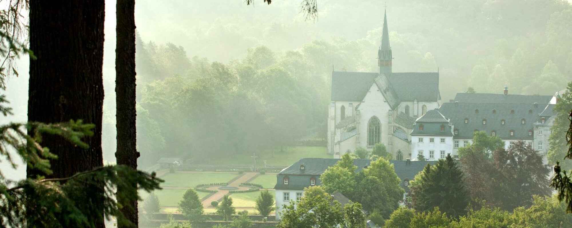 Blick durch grüne Pflanzen auf Kloster im Nebel